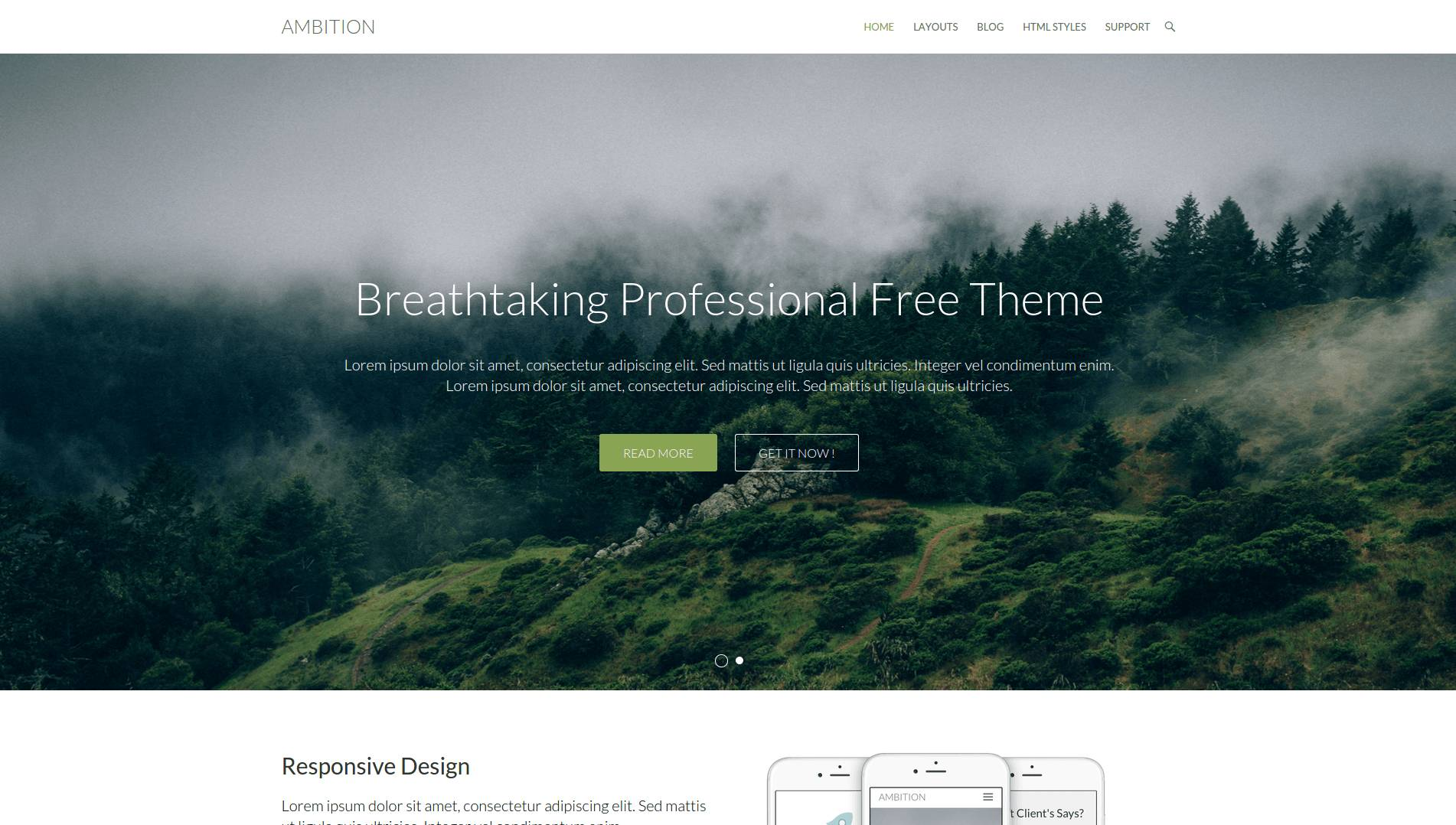 theme-wordpress-gratis-38