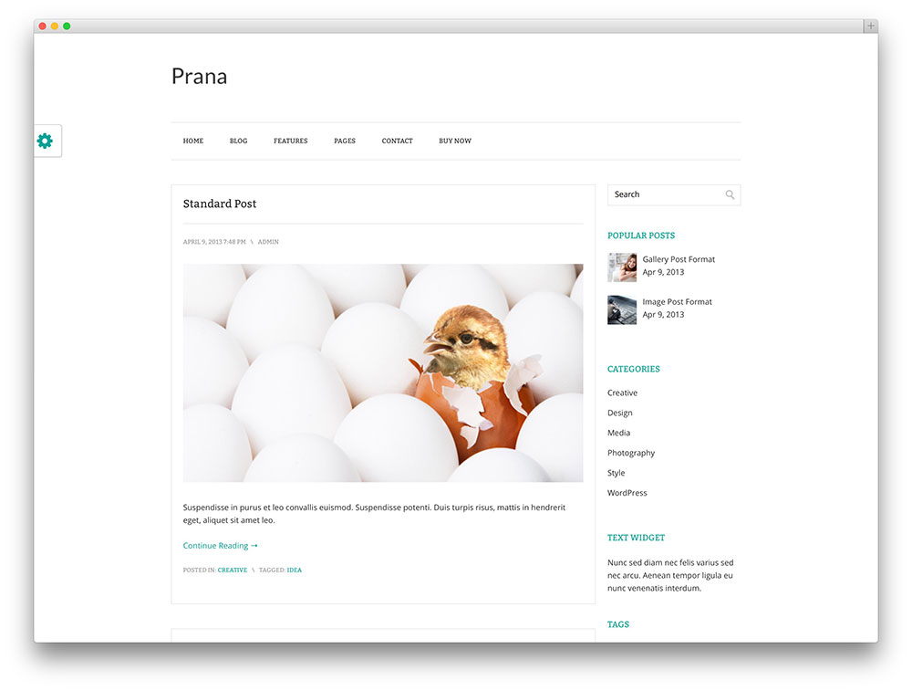 theme-wordpress-gratis-39
