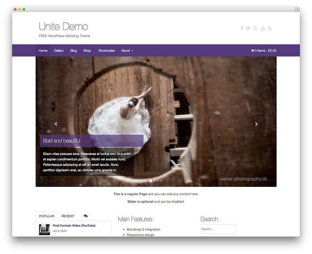theme-wordpress-gratis-54